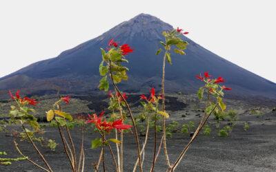 Expedícia Fogo, časť prvá: Sao Vicente – Brava – Fogo